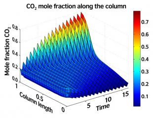 Simulation of a test case starting with a uniform CO2/N2 mixture and inducing a concentration gradient along the column length.