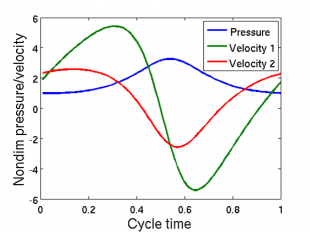 Pressure and flow velocity profiles corresponding to the cycle shown above.